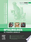 Oftalmología de pequeños animales