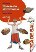 Operación Cavernícola