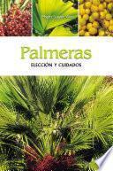 Palmeras - Elección y cuidados