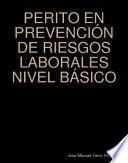 PERITO EN PREVENCIÓN DE RIESGOS LABORALES NIVEL BÁSICO