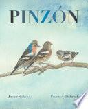Pinzón (Finch)