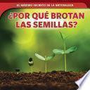 ¿Por qué brotan las semillas? (How Seeds Sprout)