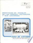 Prácticas de manejo de las cerdas lactantes y sus lechones