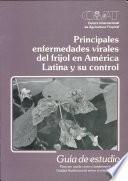 Principales enfermedades virales del frijol en América Latina y su control