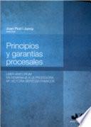 Principios y garantías procesales