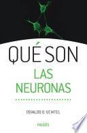 Qué son las neuronas