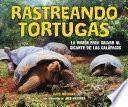 Rastreando tortugas (Tracking Tortoises)