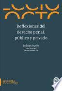 Reflexiones del derecho penal, público y privado