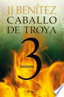 Saidan. (Caballo de Troya 3)