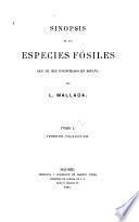 Sinopsis de las especies fósiles que se han encontrado en España: Terreno paleozóico