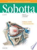 Sobotta. Atlas de anatomía humana vol 3