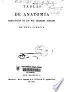 Tablas de anatomía estractadas de los mas célebres autores de esta ciencia
