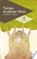 Tiempo de plantar olivos