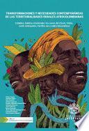 Transformaciones y necesidades contemporáneas de las territorialidades rurales afrocolombianas