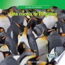 Una colonia de Pingüinos (A Penguin Colony)