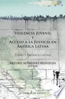 Violencia juvenil y acceso a la justicia.