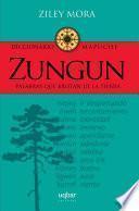 Zungun. Diccionario mapuche